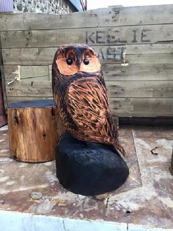 SD Provan Owl 1