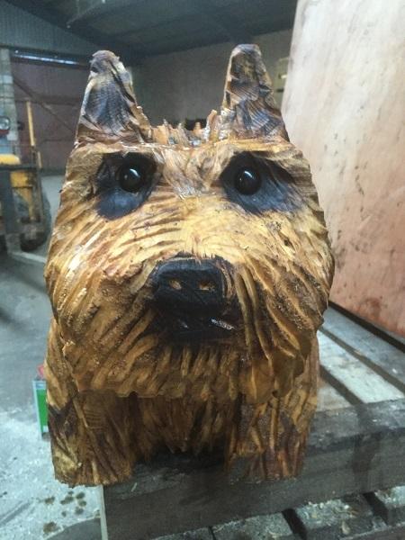 SD Provan Terrier