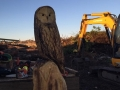 SD Provan Owl 2