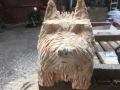 SD Provan Terrier Before Oiling