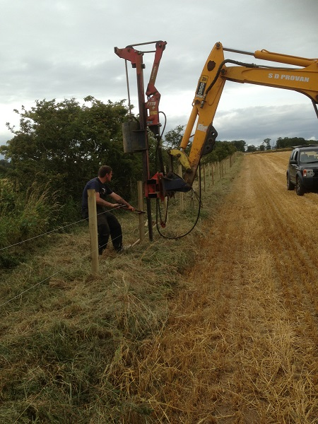 SD Provan - Fencing at Balmonth