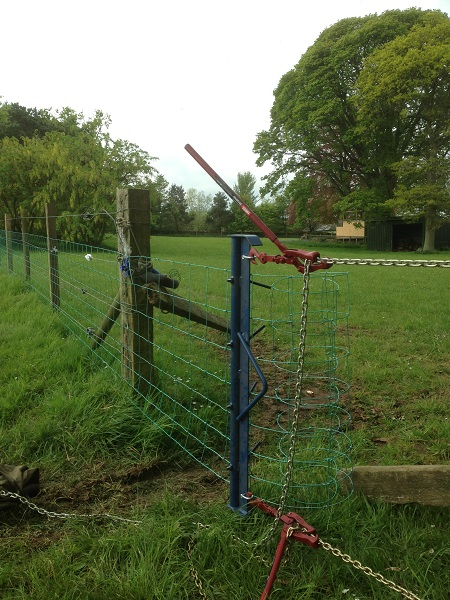 SD Provan - Netting horse paddock