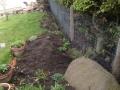 SD Provan - Rabbit proofing a garden