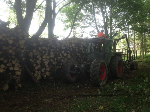 SD Provan - Forestry Fendt tool carrier and Tvek trailer