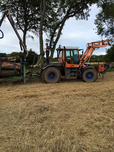 SD Provan Loading Dead Elm Trees onto timber trailer 1
