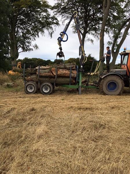 SD Provan Loading Dead Elm Trees onto timber trailer 2
