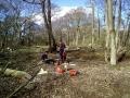 SD Provan - Removing sycamore trees around Kilconquhar Loch